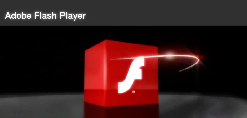 007_flashplayer