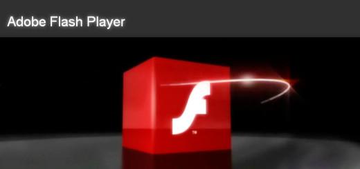 007_flashplayer