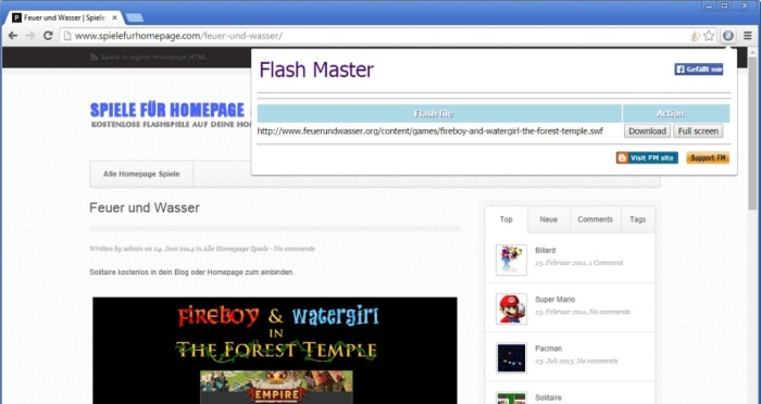 flash-master