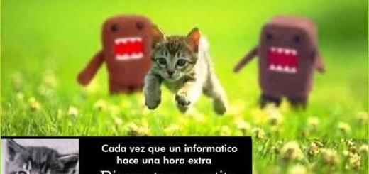 informatico4